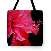 Big Red Tote Bag