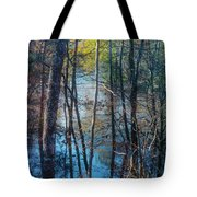 Big Thicket Water Reflection Tote Bag