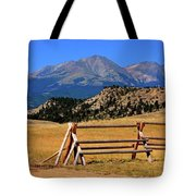 Big Timber Canyon Tote Bag