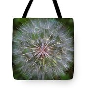 Big Wish Tote Bag