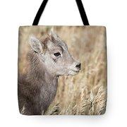 Bighorn Lamb Tote Bag