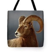 Bighorn Sheep In Winter Tote Bag