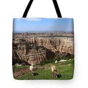 Bighorn Sheeps At Sage Creek Tote Bag
