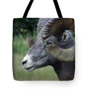 Bighorned Ram Tote Bag