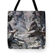 Bighorns Romantic Stare Tote Bag