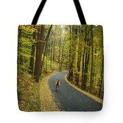 Biker On Road Amidst Fall Foliage Tote Bag