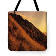 Biking At Sunset Tote Bag
