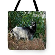 Kerry Mountain Goat Tote Bag