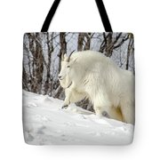 Billy Goat On The Move Tote Bag
