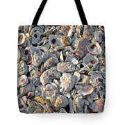 Billys Oyster Shells Tote Bag