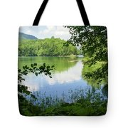 Biogradska Gora Forest  Tote Bag
