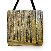 Birch Alley In Autumn Tote Bag