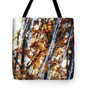 Birch And Oak And Sun Tote Bag