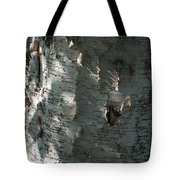 Birch Bark In Sun And Shadow Tote Bag
