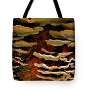 Birch Bracket Fungus Tote Bag