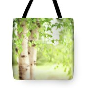 Birch In Spring Tote Bag