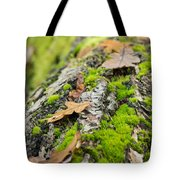 Birch Log Tote Bag