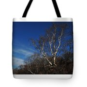 Birch On A Cliff  Tote Bag