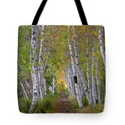 Birch Path Tote Bag