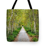 Birch Pathway Perspective Tote Bag