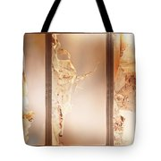 Birch Peel Tryptich Tote Bag
