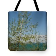 Birch Tree Over Lake Tote Bag