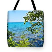 Birch Trees Above Lake Superior Off North Country Trail In Pictured Rocks National Lakeshore-mi Tote Bag