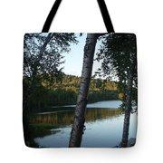 Birch Trees Along The Lake Tote Bag