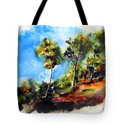 Birch Trees At Swallow Falls Tote Bag