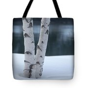 Birch Twins In Snow Tote Bag