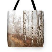 Birch Walk Tote Bag