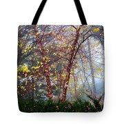 Birch Weightlessness Tote Bag