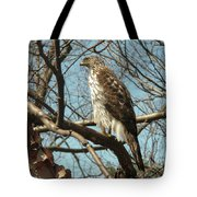 Birched Cooper 2 Tote Bag