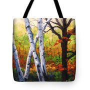 Birches 05 Tote Bag