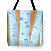 Birches #3 Tote Bag