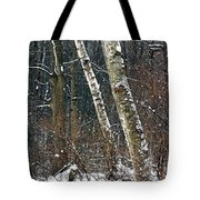 Birches During A Snowfall Tote Bag