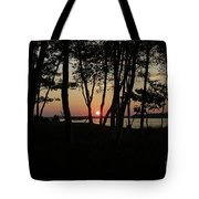 Birches Watch The Sunset Tote Bag
