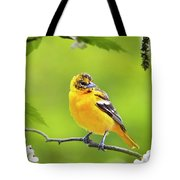 Bird And Blooms - Baltimore Oriole Tote Bag