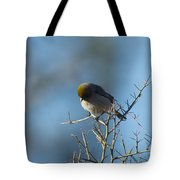 Bird At Pontatoc Tote Bag