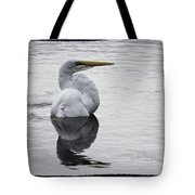 Bird Bath 4619 Tote Bag