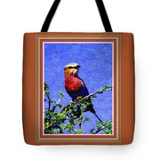 Bird Beauty - No 7 P B With Alternative Decorative Ornate Printed Frame. Tote Bag