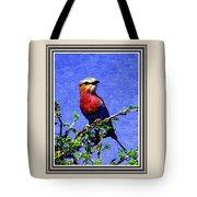 Bird Beauty - No 7 P B With Decorative Ornate Printed Frame. Tote Bag