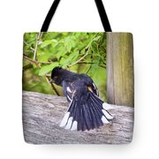 Bird Behavior - Eastern Towhee Fans His Tail Tote Bag