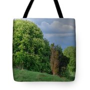 Bird Cherry Blossoms In Spring Tote Bag
