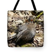 Bird In Hiding Tote Bag