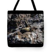 Bird Island 6 Tote Bag