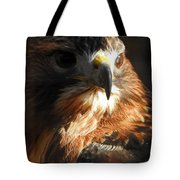 Bird Of Mystery Tote Bag