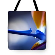 Bird Of Paradise 1 Tote Bag