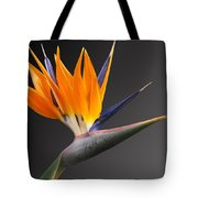Bird Of Paradise #3 Tote Bag
