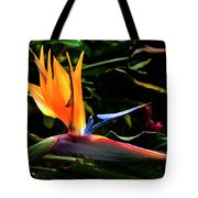 Bird Of Paradise Flower Tote Bag by Brian Harig